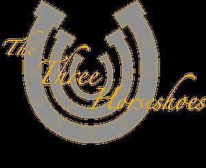 3hs logo (1)